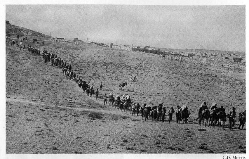 Μήνυμα Αθανασίου για τα 100 χρόνια από τη γενοκτονία των Ελλήνων του Πόντου